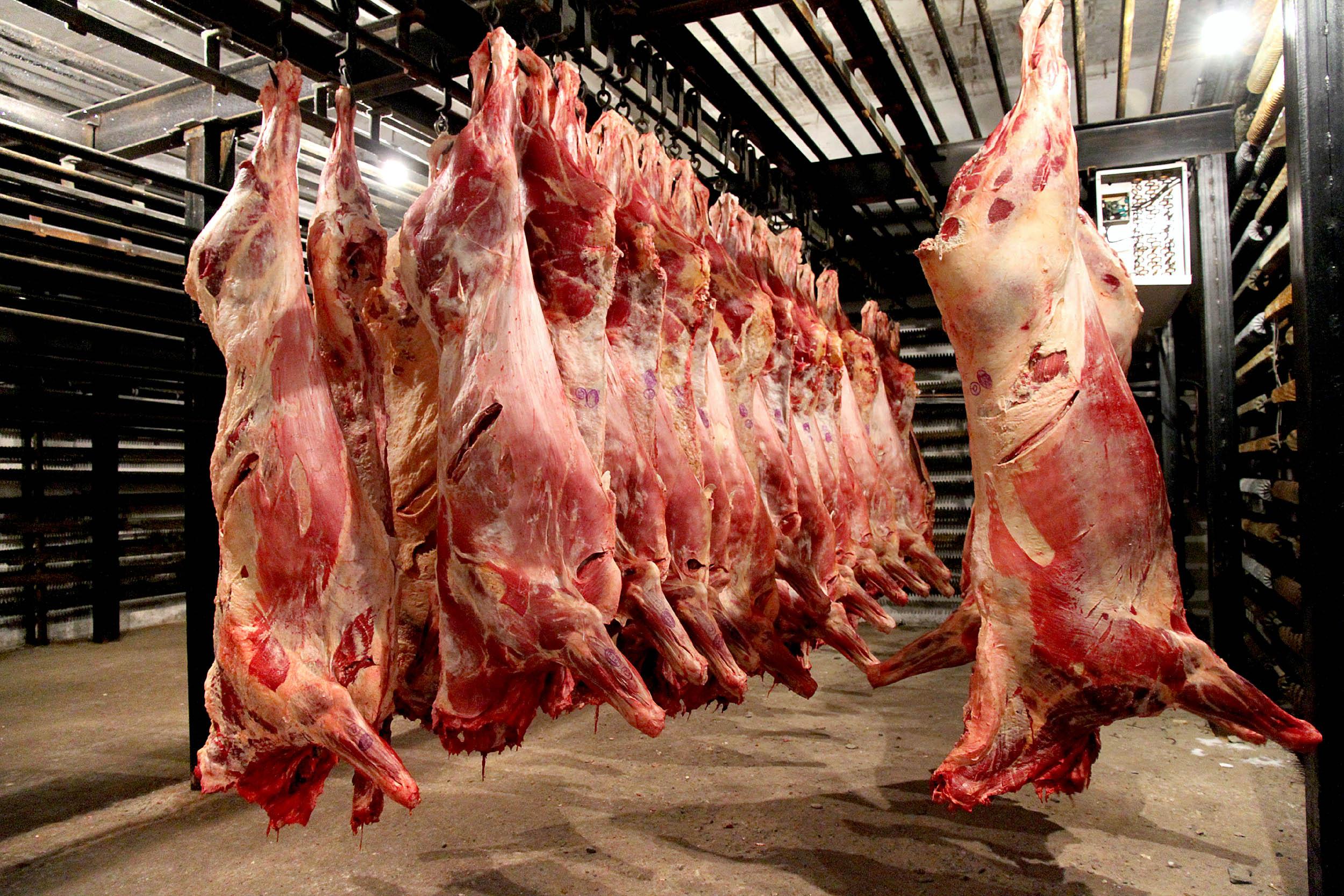 лечилась врачей-психотерапевтов крупный рогатого скота мясо апоцет сне думала